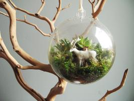Crafternoon: Terrarium Ornaments