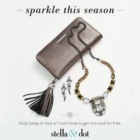 Meet Stella & Dot - NOV Team Meeting