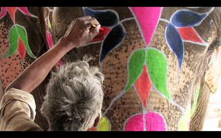 MsFF: Living In Colour
