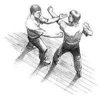 Free Introduction to Wing Chun, Chinese Martial Art