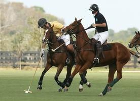 Polo Charity Event