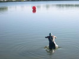 Open Water Swimming 2014