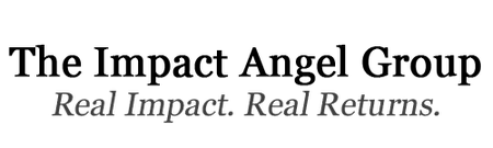 """""""Impact"""" in Angel Investor Decisions with Brad Feld..."""