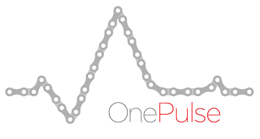 OnePulse Benefit Party
