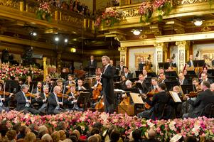 Vienna Philharmonic Orchestra:  Master Class 1