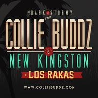 Collie Buddz & New Kingston at The Black Sheep