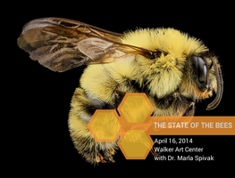The State of The Bees: A Talk by Dr. Marla Spivak