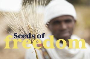 Seeds of Freedom Film Screening and Yes on Prop 37...