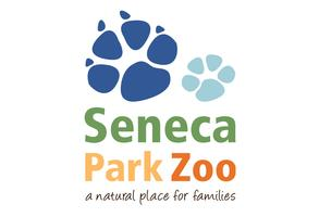 Connections: Seneca Park Zoo - Wolf Day