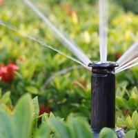 Watering Wisely (Saturday, June 14 at 10:00am)