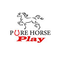 Pure Horse Play's Independence Day Concert