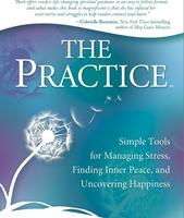 The Practice Book Tour & Book Signing With Barb Schmidt