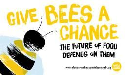 Share The Buzz – Why We Need Bees!