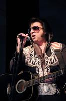 Elvis: A Concert Experience