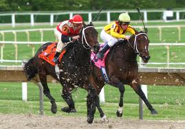 Arlington Park Races and More Miller Lite Party in the ...