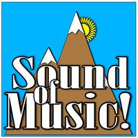 Sound of Music Charitable Presentation!