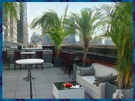 FREE NYC Professionals Networking Rooftop Event at The...