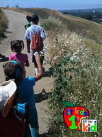 Fit For a Kid Nature Explorers, A Walk in the...