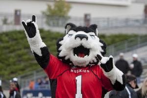NIU vs. Northwestern Game Week Celebration
