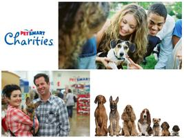 Dog Date Afternoon With PetSmart Charities