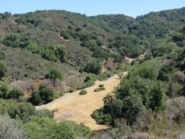 Foothills Park Workday 8/17/14