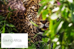 Saving Africa - Photography by Christopher Ward -...