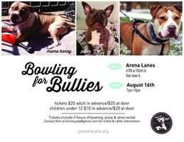 Bowling for Bullies- Peace for Pits, Inc.