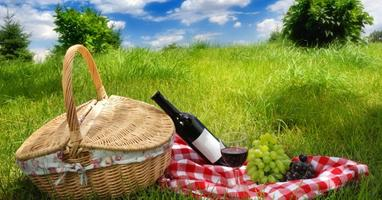 Picnic Perfect Wines