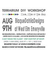 Terrarium D.I.Y Workshop