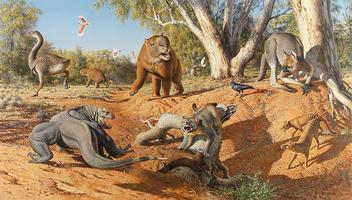 Science Week: Megafauna Workshop - Tuesday 19 August: