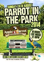 Parrot in The Park