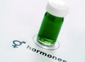 New York, NY - Hormone Class for Women