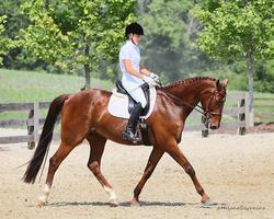 Autumn Bio Mechanics Clinic with Stephanie Mosely