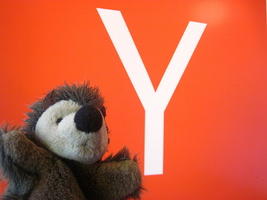 Y Combinator: The Secret in This Incubator's Sauce INF
