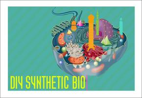 MFA 2012 Workshop - Introduction to Synthetic Biology