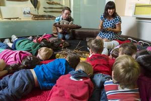 Night Creatures: Storytelling 2 October 11.30am
