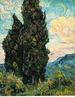 Wine and Painting Wednesdays: 'Cypress Tree' By...