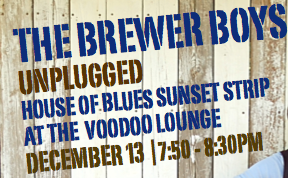 The Brewer Boys Unplugged