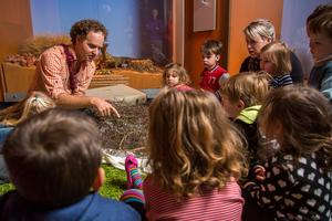 Tell Me A Story: Mammals and Me 6 November at 11.00am