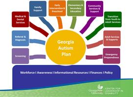 Georgia Autism Plan Stakeholders Meeting