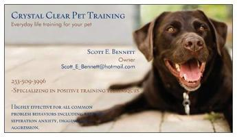 Crystal Clear Everyday Life Dog Training