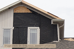 Wind Damage - Image credit Dr. Greg Kopp, Western University