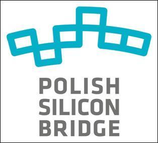 Polish Silicon Brige