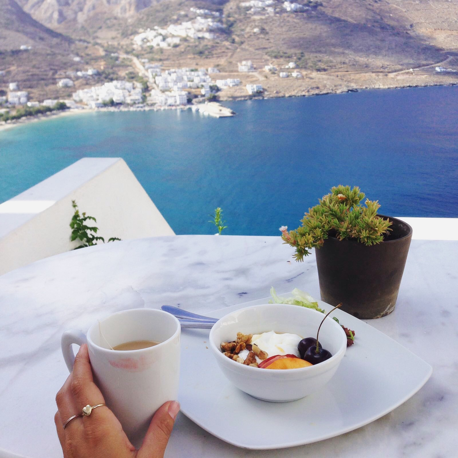 Beautiful breakfast with a view!