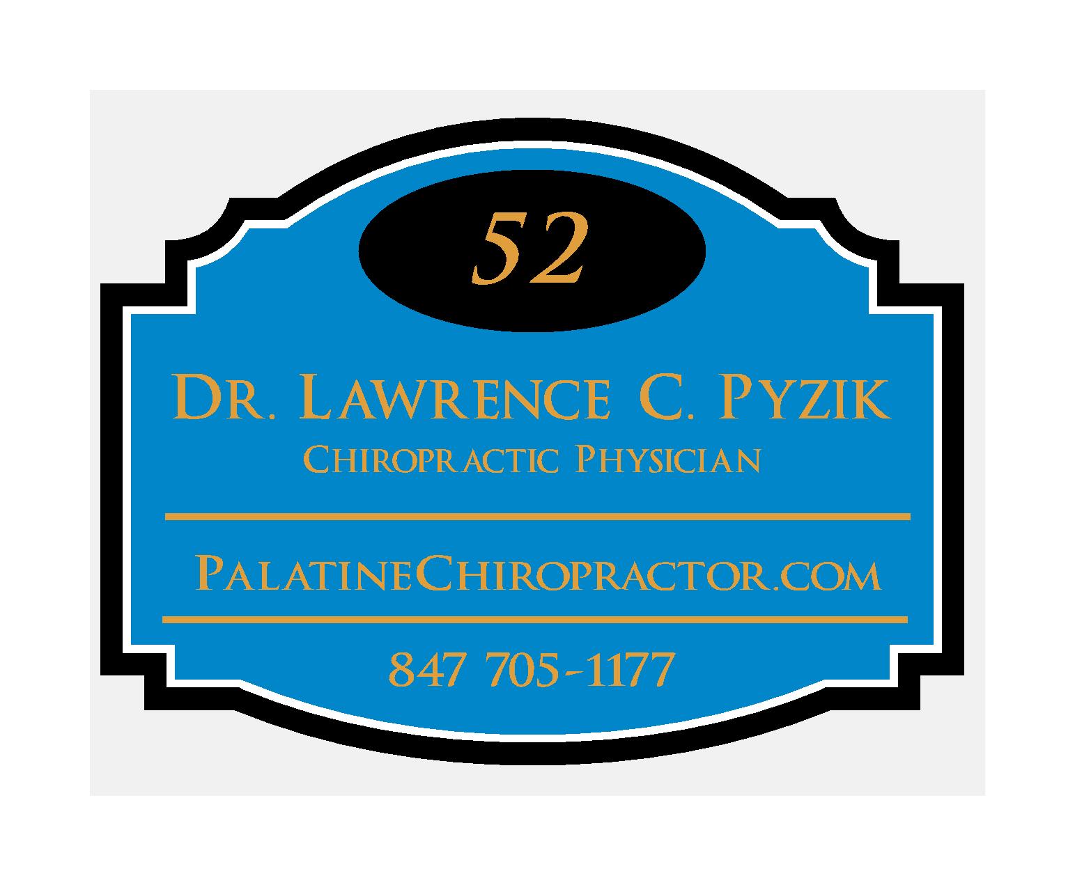 Palatine Chiropractor Dr. Pyzik