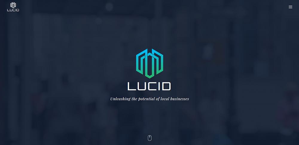 Lucid DMS Professional Web Design