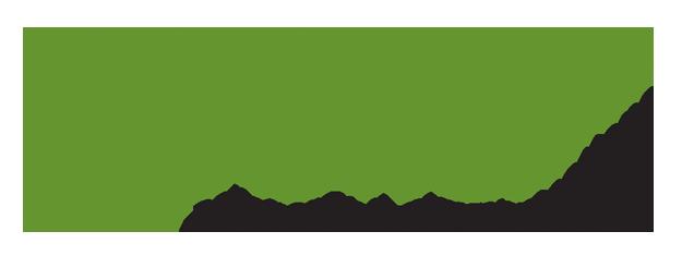 RootId logo