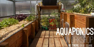 Aquaponics Workshop with The Simple Way