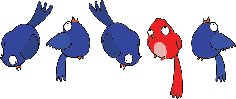 1 in 5 birds
