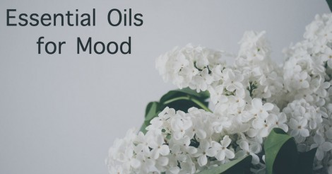 WORKSHOP: Mood Management with Essential Oils @ Urban Organics Market | Sherwood Park | Alberta | Canada